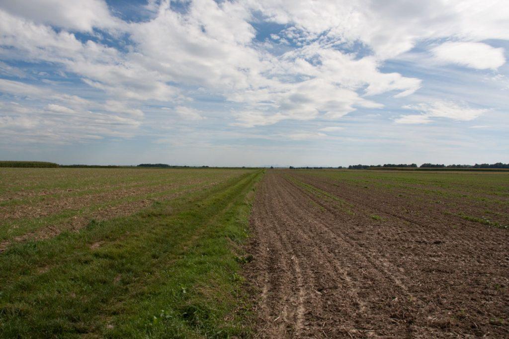 Foto 3: Feld und Himmel mit Fokus auf den Horizont